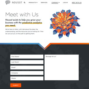 Nousot contact form. Gravity Forms integration by Chicago web developer erica dreisbach.