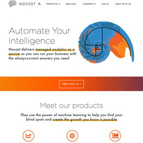 Nousot homepage featuring nautilus and spiral animation based on the Golden Ratio. SVG vector line animation by Chicago web developer erica dreisbach,