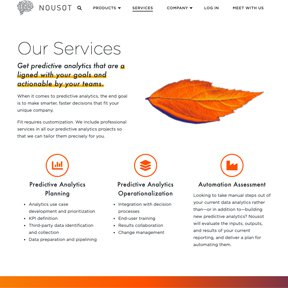 """Nousot """"Our Services"""" section. Wordpress design and development be freelance Chicago developer erica dreisbach."""