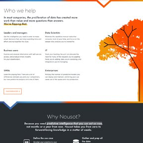 """Nousot """"Who We Help"""" section featuring SVG vector line animation by Chicago web developer erica dreisbach."""