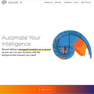 homepage screenshot for Nousot   Wordpress design and development by Chicago developer erica dreisbach